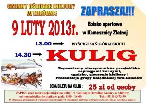 Impreza w Kamesznicy